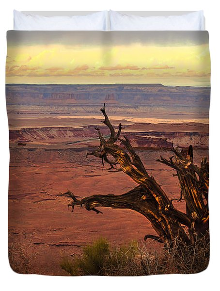 Old One Duvet Cover by Robert Bales