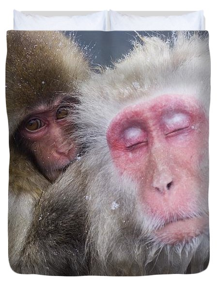 Older Snow Monkey Being Groomed By A Duvet Cover by Natural Selection Anita Weiner