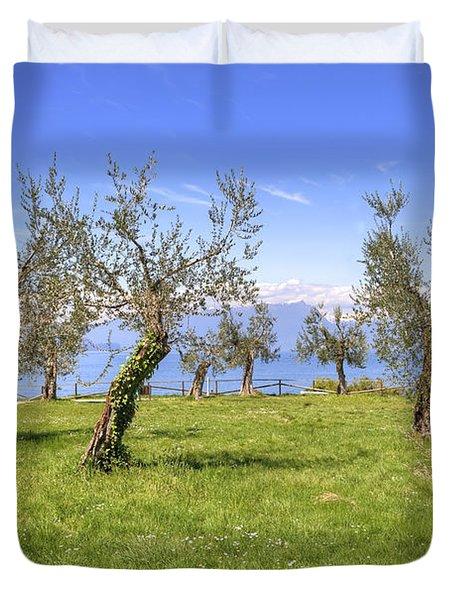 olive grove on Lake Gardan Duvet Cover by Joana Kruse