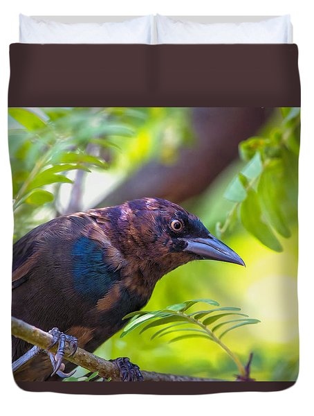 Ominous Molting Grackle Duvet Cover by Bill Tiepelman