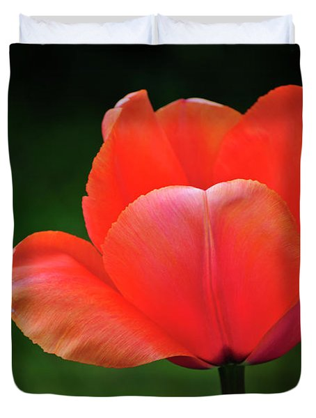 Opened Red Duvet Cover by Agrofilms Photography