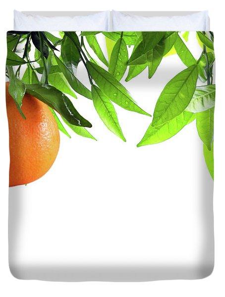 Orange Branch Duvet Cover by Carlos Caetano