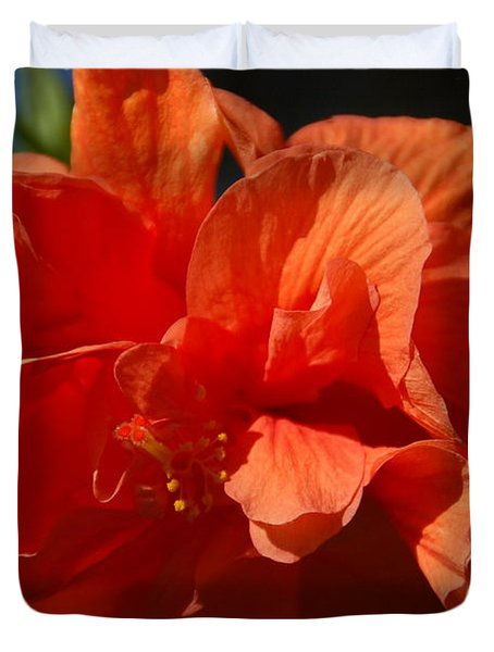 Orange Hibiscus Duvet Cover by Aimee L Maher Photography and Art