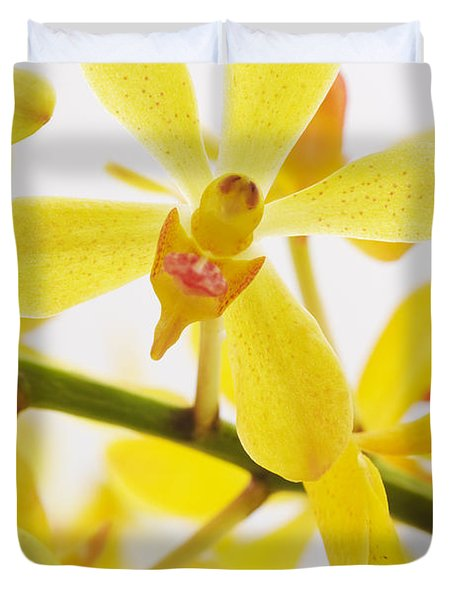 orchid Duvet Cover by ATIKETTA SANGASAENG
