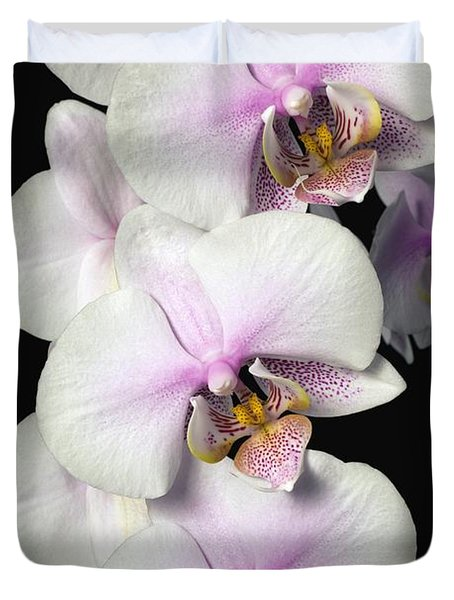 Orchids Duvet Cover by David Chapman