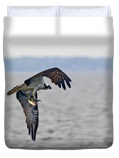 Osprey Grab Duvet Cover by Brian Wallace