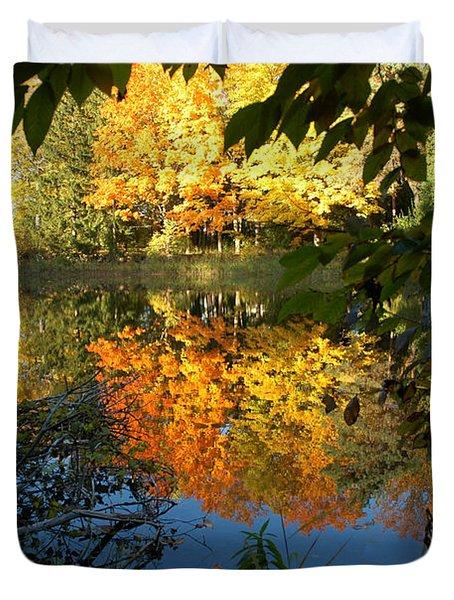 Out of the Woods Duvet Cover by LeeAnn McLaneGoetz McLaneGoetzStudioLLCcom