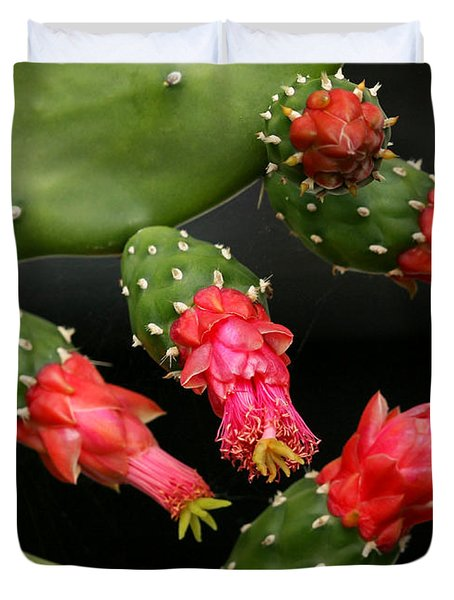 Paddle Cactus Flowers Duvet Cover by Sabrina L Ryan