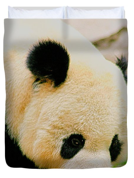 Panda  Duvet Cover by Cheryl Young