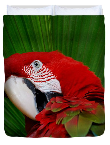 Parrot Head Duvet Cover by Skip Willits