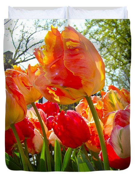 Parrot Tulips In Philadelphia Duvet Cover by Mother Nature