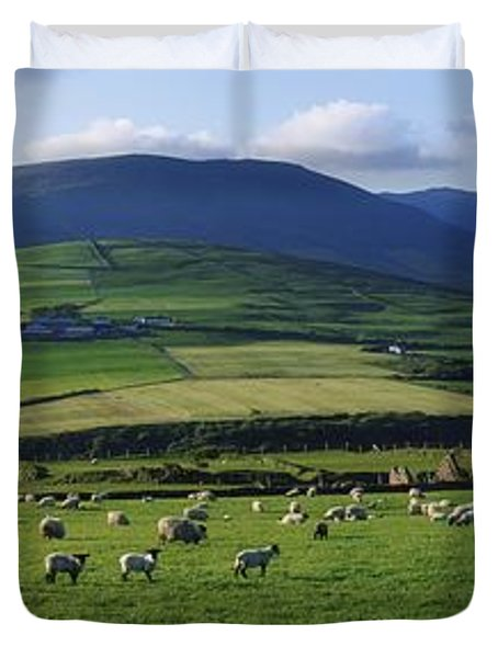 Pastoral Scene Near Anascual, Dingle Duvet Cover by The Irish Image Collection