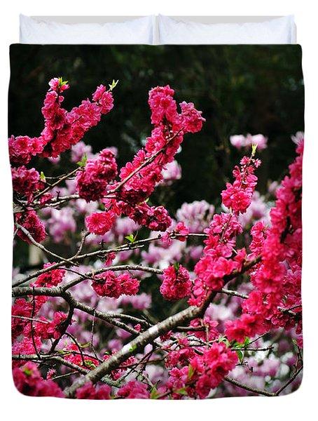 Peach Blossom Duvet Cover by Kaye Menner