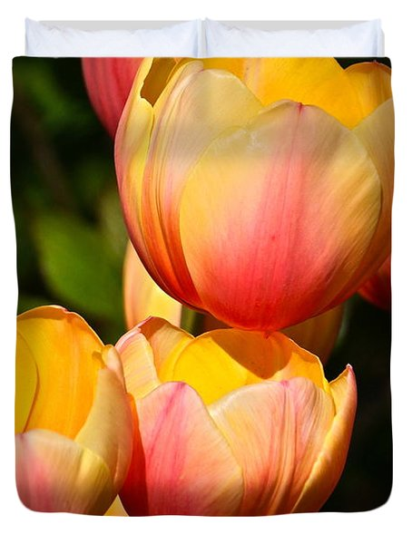 Peachy Tulips Duvet Cover by Byron Varvarigos