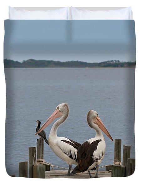 Pelicans On A Timber Landing Pier Mooring Duvet Cover by Ulrich Schade