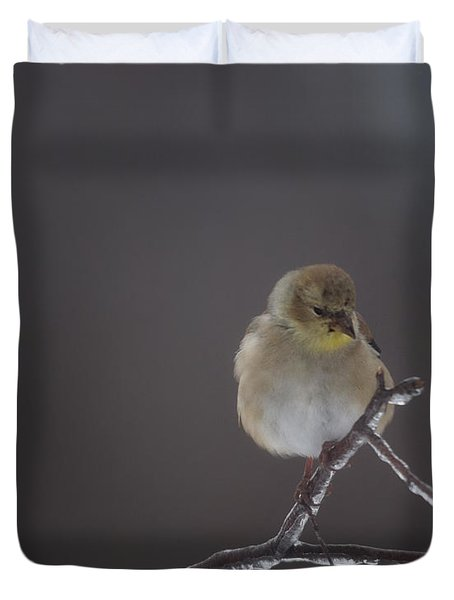 Pensive Duvet Cover by Susan Capuano