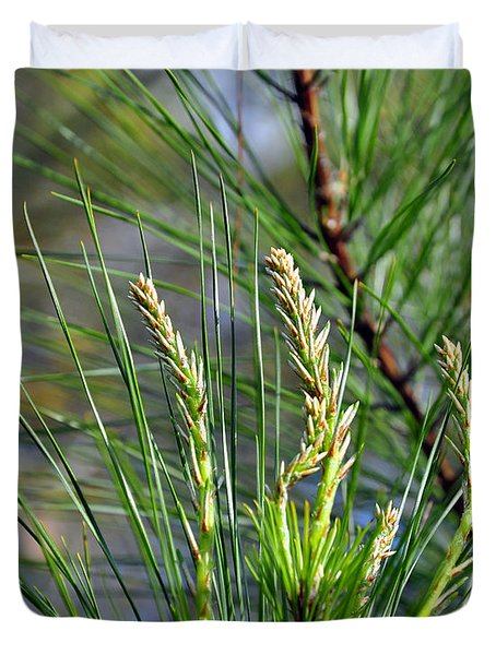 Pine Needles Duvet Cover by Al Powell Photography USA