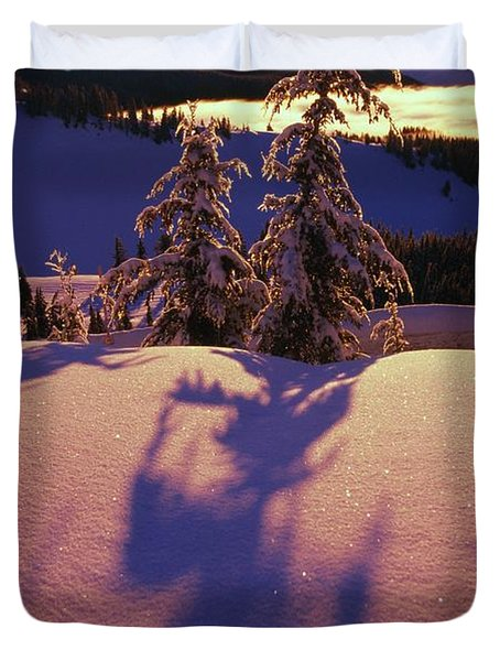 Pink And Purple Sunrise Shadows Of Snow Duvet Cover by Natural Selection Craig Tuttle