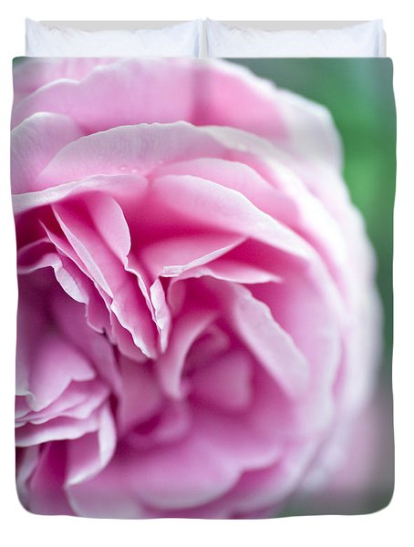 Pink Bourbon Rose LOUISE ODIER Duvet Cover by Frank Tschakert