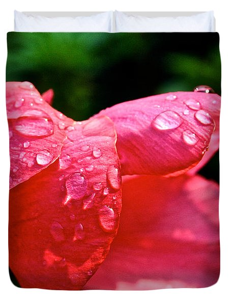 Pink Canna Lily Duvet Cover by Susan Herber