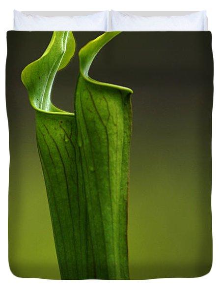 Pitcher Plants 2 Duvet Cover by Bob Christopher