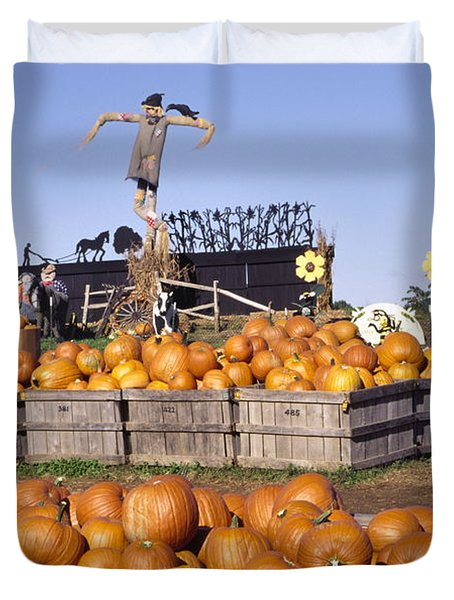 Plenty Of Pumpkins Duvet Cover by Sally Weigand