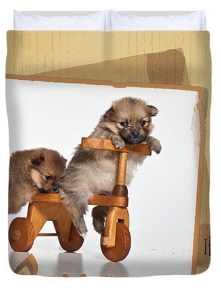 Pomeranian 1 Duvet Cover by Everet Regal