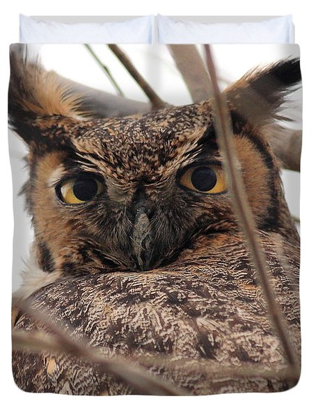 Portrait of a Great Horned Owl Duvet Cover by Wingsdomain Art and Photography