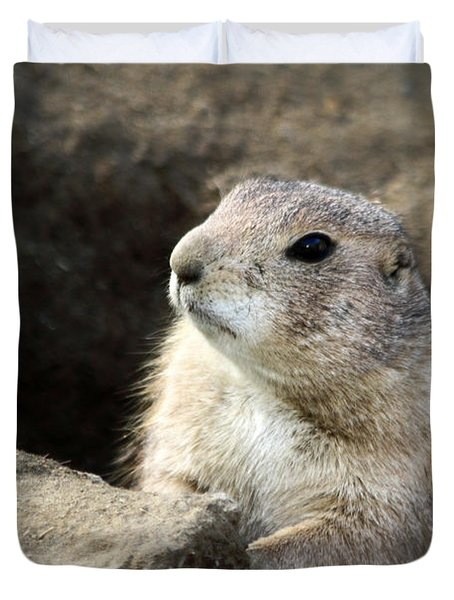 Prairie Dog Lookout Duvet Cover by Karol Livote