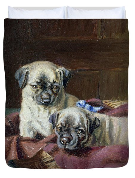 Pug Puppies In A Basket Duvet Cover by  Horatio Henry Couldery