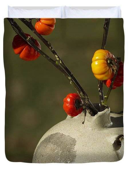 Pumpkin on a Stick in an Old Primitive Moonshine Jug Duvet Cover by Kathy Clark