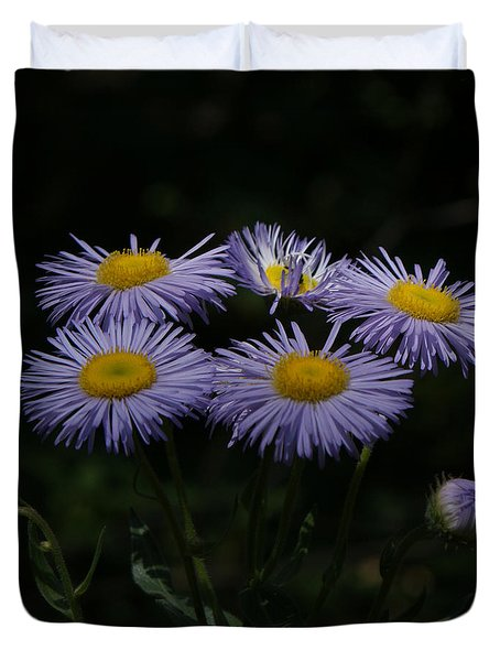 Purple Asters Duvet Cover by Ernie Echols