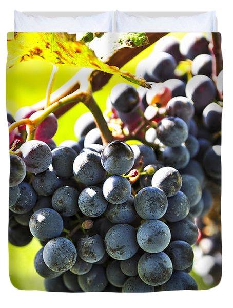 Purple Grapes Duvet Cover by Elena Elisseeva