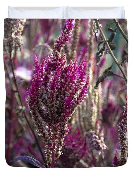 Purple Haze Duvet Cover by Bill Cannon