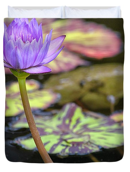 Purple Water Lilly Duvet Cover by Lauri Novak