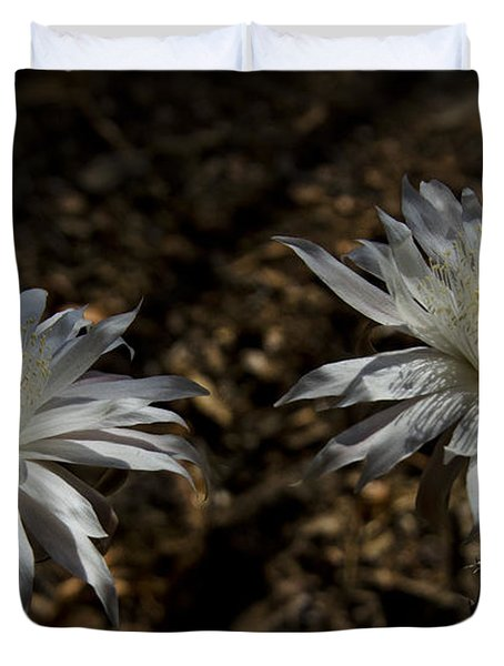 Queen Of The Night Blooms Duvet Cover by Saija  Lehtonen