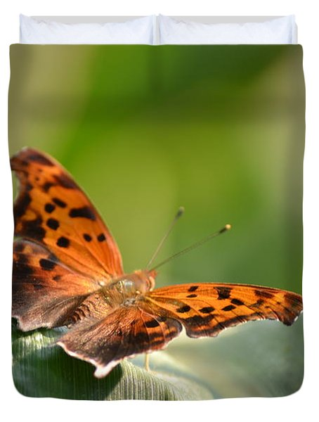 Question Mark Butterfly Duvet Cover by JD Grimes