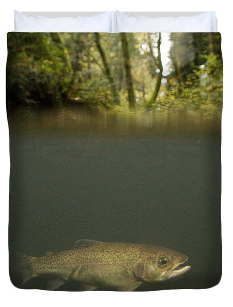 Rainbow Trout In Creek In Mixed Coast Duvet Cover by Sebastian Kennerknecht