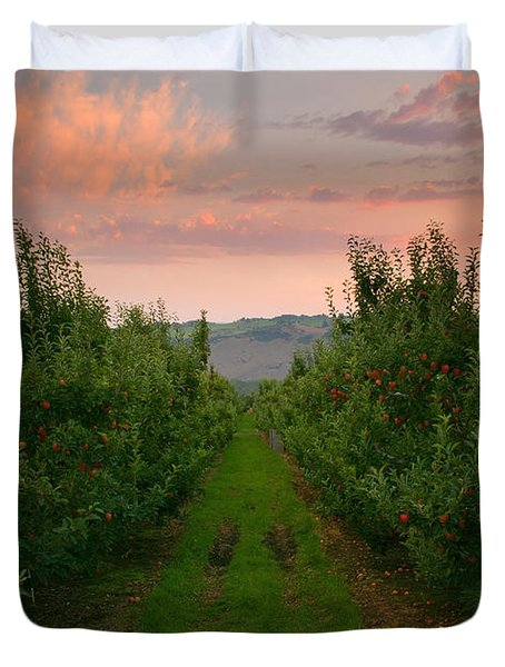 Red Apple Sunset Duvet Cover by Mike  Dawson