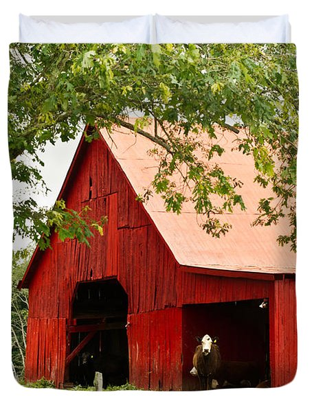 Red Barn with Pink Roof Duvet Cover by Douglas Barnett