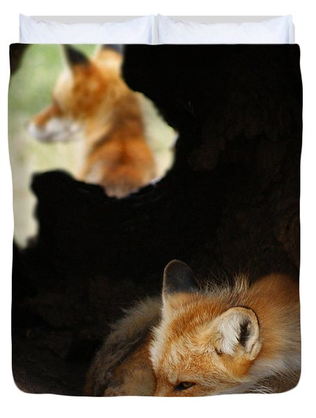 Red Fox Dreaming Duvet Cover by Ernie Echols