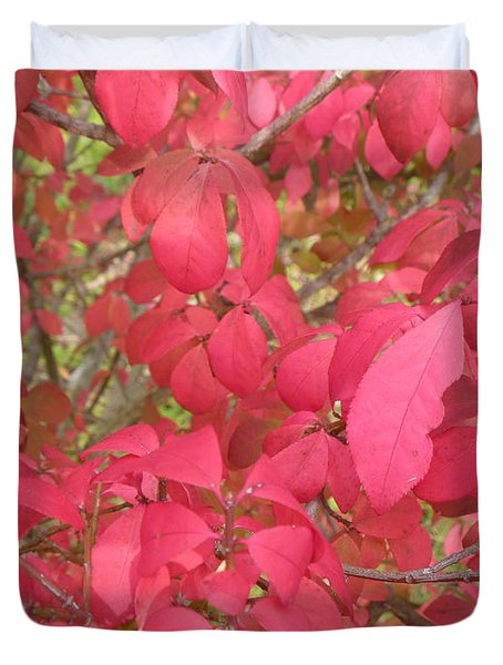 Red Leaves IIi Duvet Cover by Alys Caviness-Gober