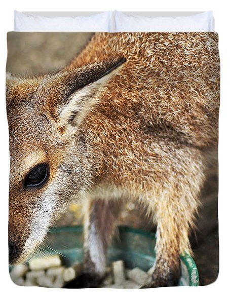 Red-necked Wallaby Duvet Cover by Kaye Menner