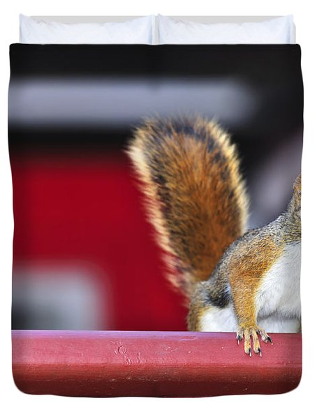 Red Squirrel On Railing Duvet Cover by Elena Elisseeva