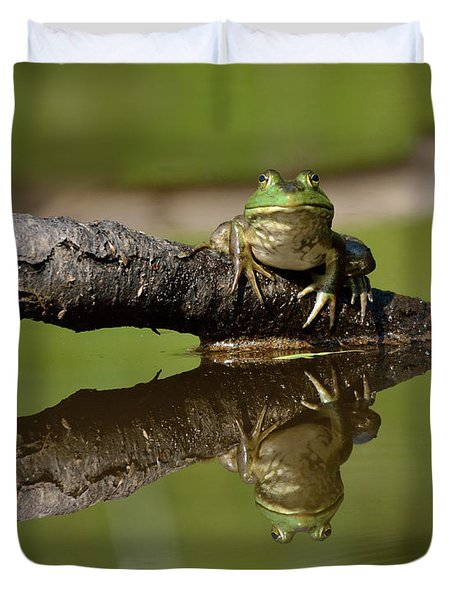 Reflecktafrog Duvet Cover by Susan Capuano