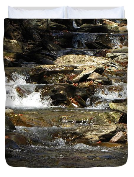Ricketts Glen Waterfall 3975 Duvet Cover by David Dehner
