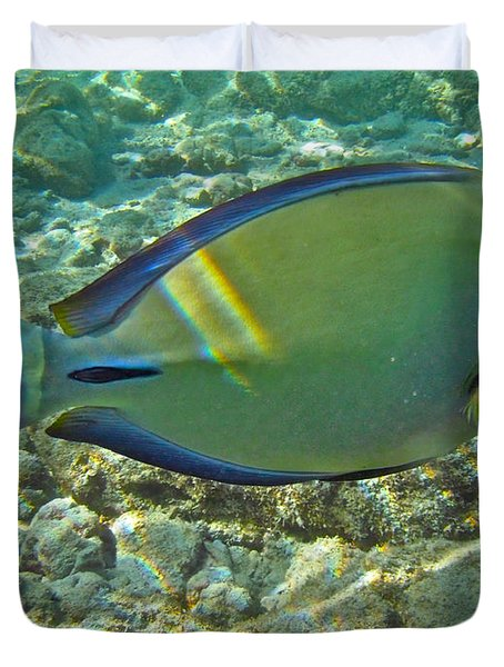 Ringtail Surgeonfish Duvet Cover by Michael Peychich