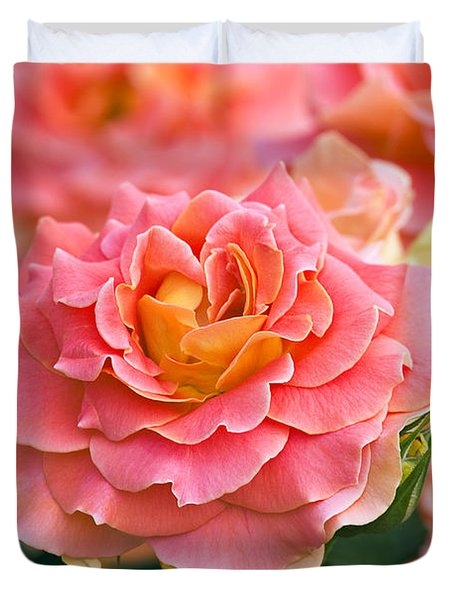 Rosa 'brass Band' Duvet Cover by Alan Detrick and Photo Researchers