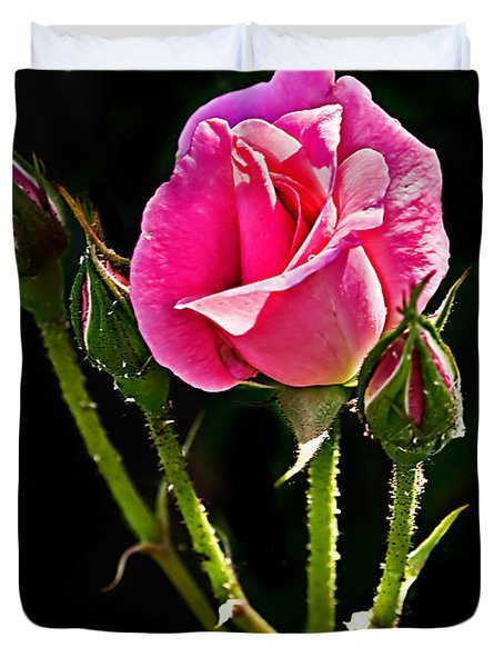 Rose And Buds Duvet Cover by Robert Bales