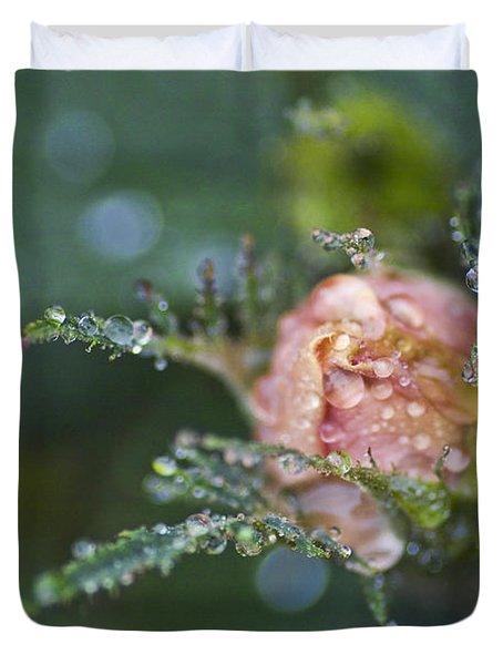 Rose Flower Series 9 Duvet Cover by Heiko Koehrer-Wagner